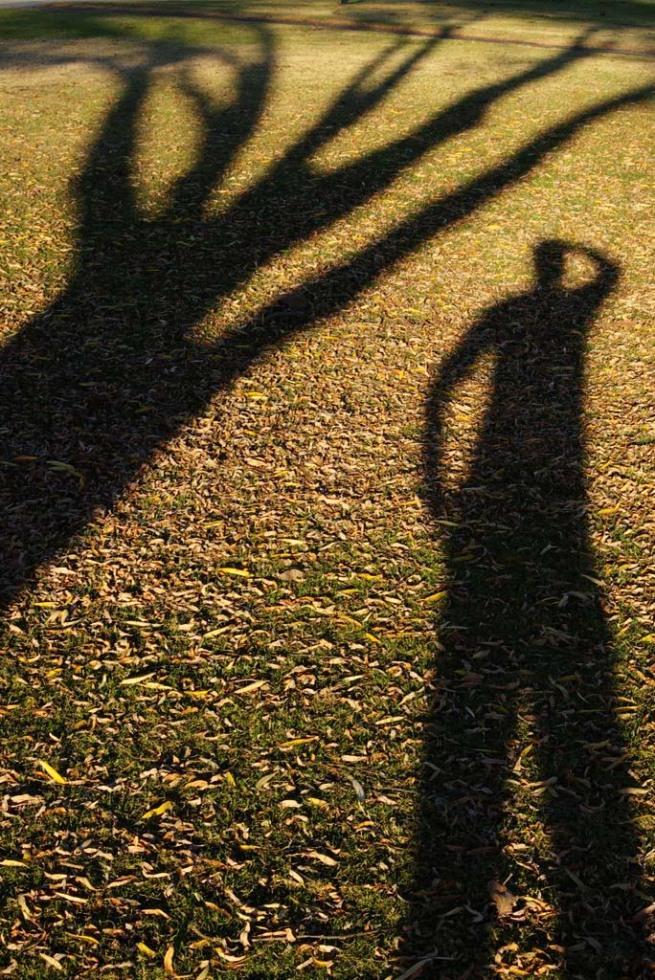 shadow12
